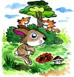 Téléchargement Comptine 1 petit lapin